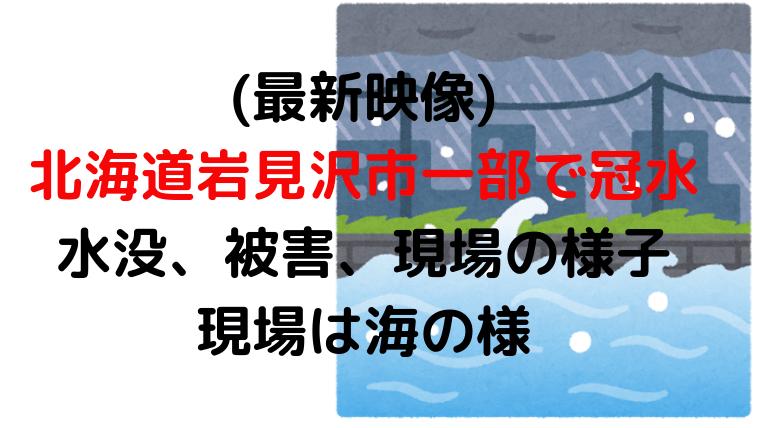 (2019年8月31日)北海道岩見沢市一部で冠水、水没、被害、現場の様子-現場は海の様